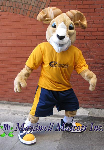 Ram Mascot Suffolk University Maydwell Mascots
