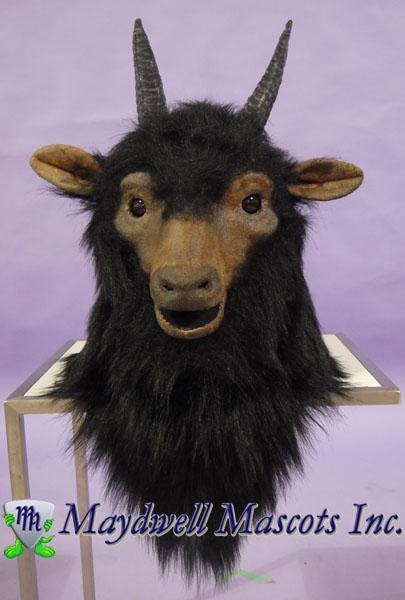 Goat Molson Coors