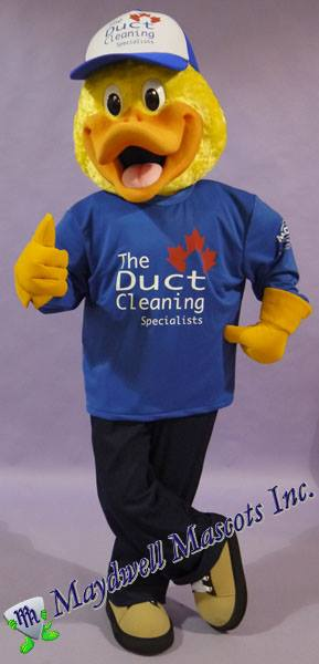 The Duct Cleaning Specialist