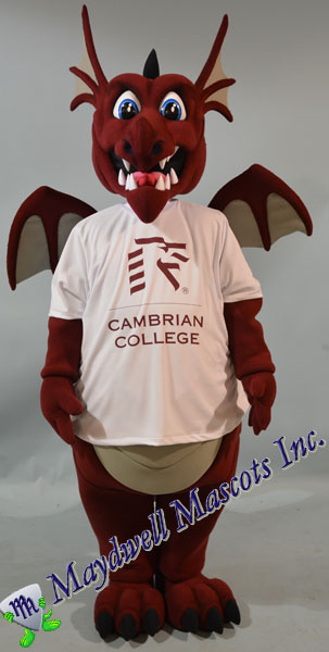 Dragon Cambrian College with shirt