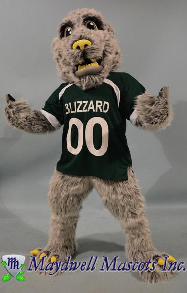 Blizzard Green Bay Blizzards