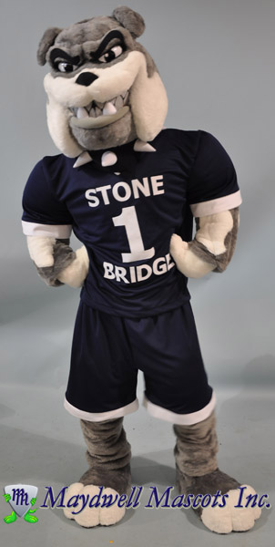Dog Bulldog Stone Bridge
